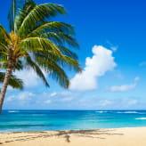 ハワイ旅行を存分に楽しめるクレジットカードの使い方をご紹介!